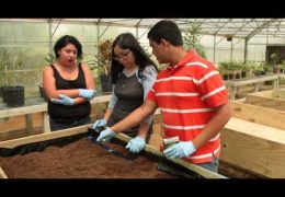 Summer horticulture camp unearths career options for students