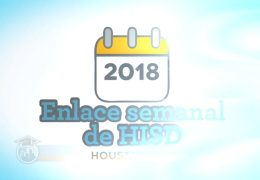 Weekly Wrap Spanish Dec 14