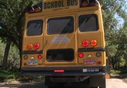 School Bus Safety English