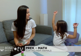 PREK MATH WEEK 3 – SORTING ANIMALS -MARIANA CORONADO – TRT 17-00