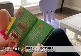 Prek SP Reading Week 2 – Literacy -Mariana Coronado – Trt 26-33