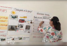 K-2nd Science (Spanish) – Animales dependen unos de otros