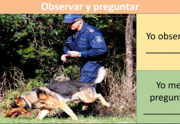 3rd-5th Reading/Writing (Spanish) – Causa y Efecto