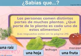K-2nd Reading (Spanish) – Caraterísticas y estructuras de texto