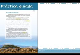 3rd-5th  Reading/Writing  (Spanish) – Memoria salvaje: Idea central y detalles