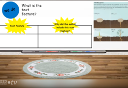 K-2 Reading/Writing – Text Features