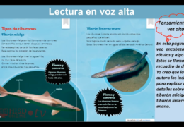 K-2 Reading/Writing (Spanish) – Todo sobre los tiburones