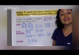 3° 5° Matemáticas WEEK OF SEPT 14 Descomponer Números Karina Moreno TRT44 22